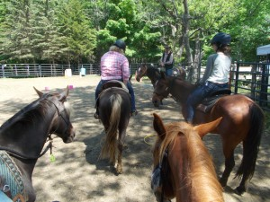 RJ on Star Instructing Class Sue on Santana, Thea on Paul E Whisper on left, Red Cloud on right 5-30-18